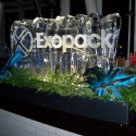 Ice Sculpture For Private Corporate Event